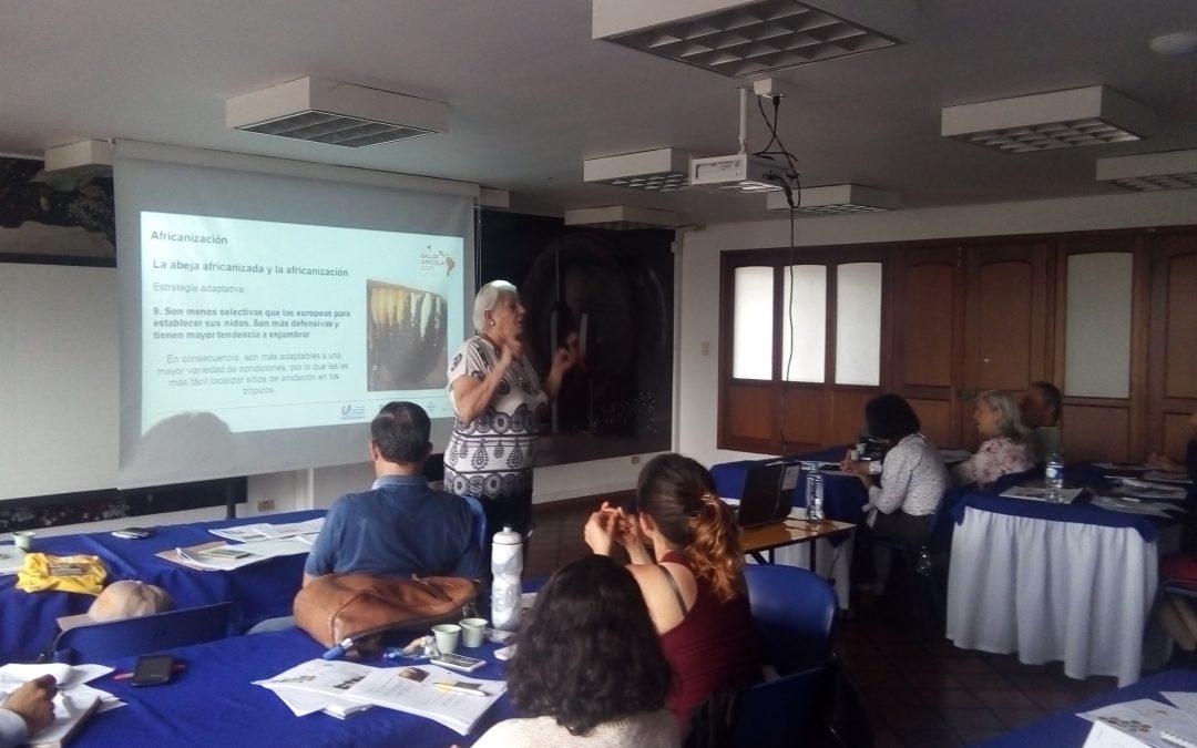 Capacitación a apicultores puede potenciar la productividad de colmenas en Colombia