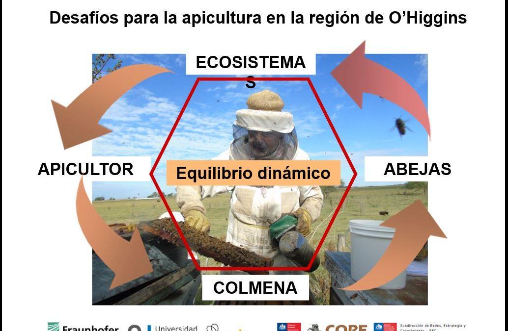 Taller abordó los desafíos y oportunidades de la apicultura para la Región de O'Higgins
